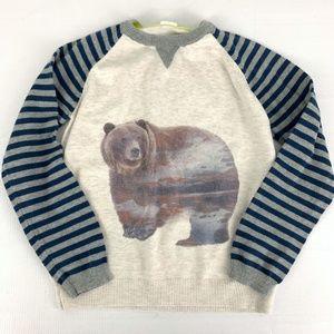 Egg by Susan Lazar Bear Stripe Sweater Boys Sz 7 y